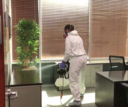 fogging-cleaning-and-disinfection